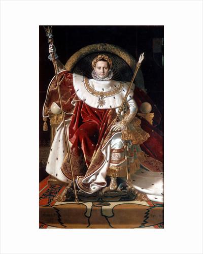 Napoleon on his Imperial Throne, 1804 by Napoleon Bonaparte I