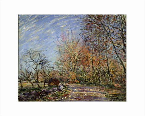 At the edge of the forest in Fontainebleau, 1885. by Alfred Sisley