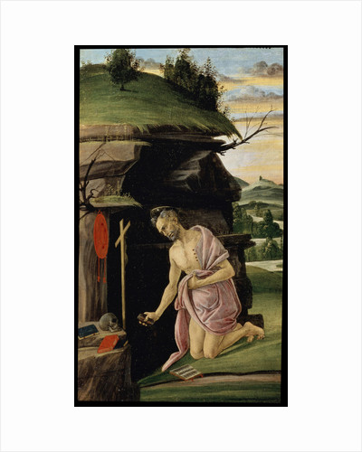 Saint Jerome, between 1498 and 1505 by Sandro Botticelli