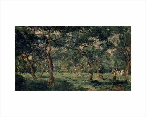 Olive Orchard, early 1870s by Charles François Daubigny