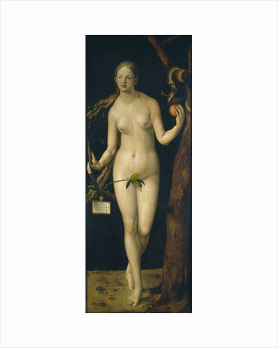 Eve, 1507 by Albrecht Dürer