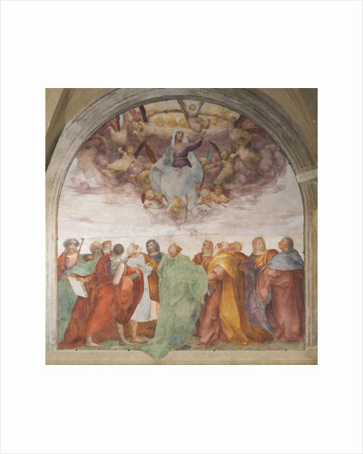 The Assumption of the Blessed Virgin Mary by Rosso Fiorentino