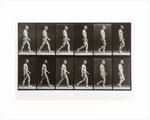 Man walking, Plate 6 from Animal Locomotion, 1887 by Anonymous