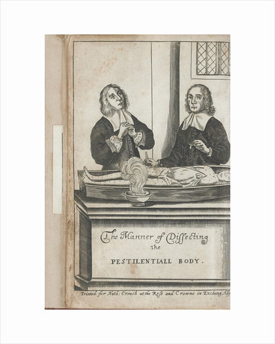 Two men dissecting a body with plague marks, 1666 by Anonymous