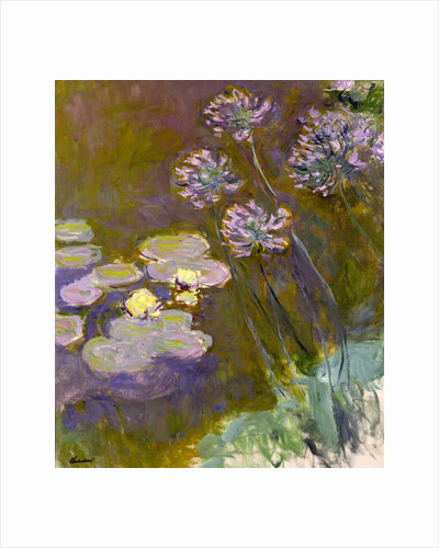 Water Lilies and Agapanthus, 1914-1917 by Anonymous