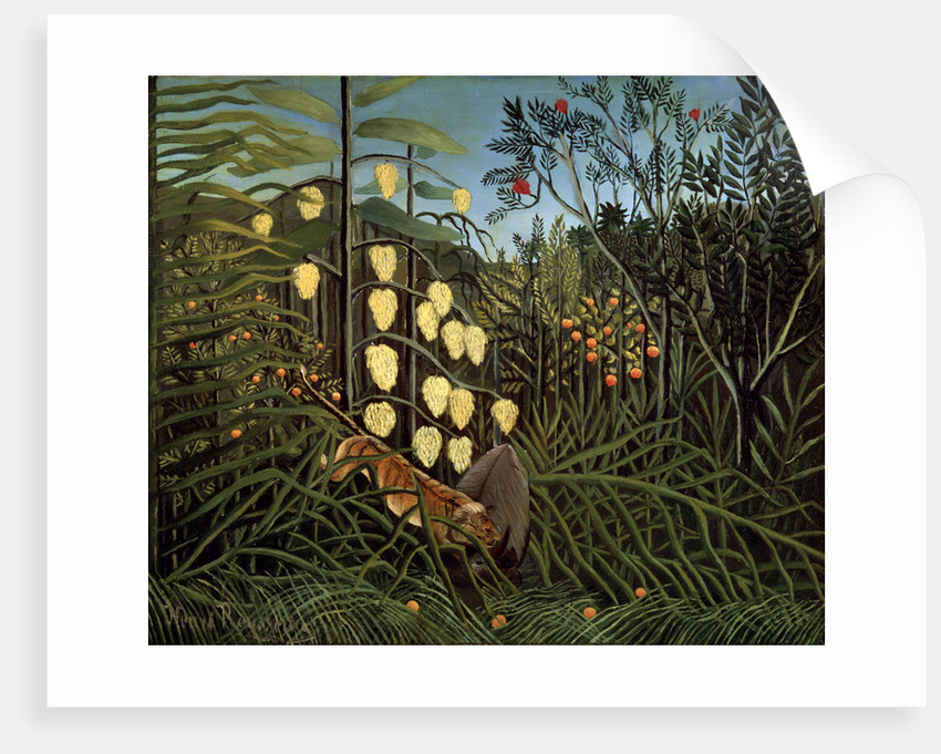 In a tropical Forest. Struggle between Tiger and Bull by Henri Rousseau