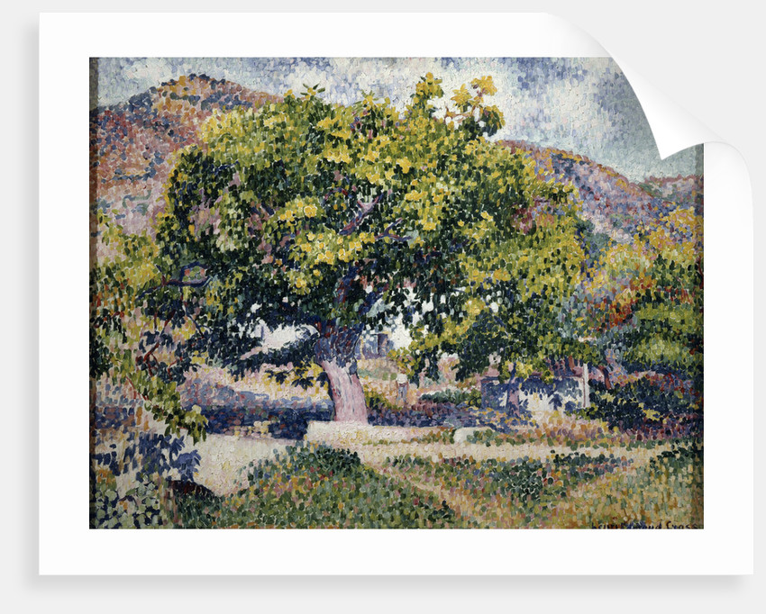 Near my House by Henri Edmond Cross