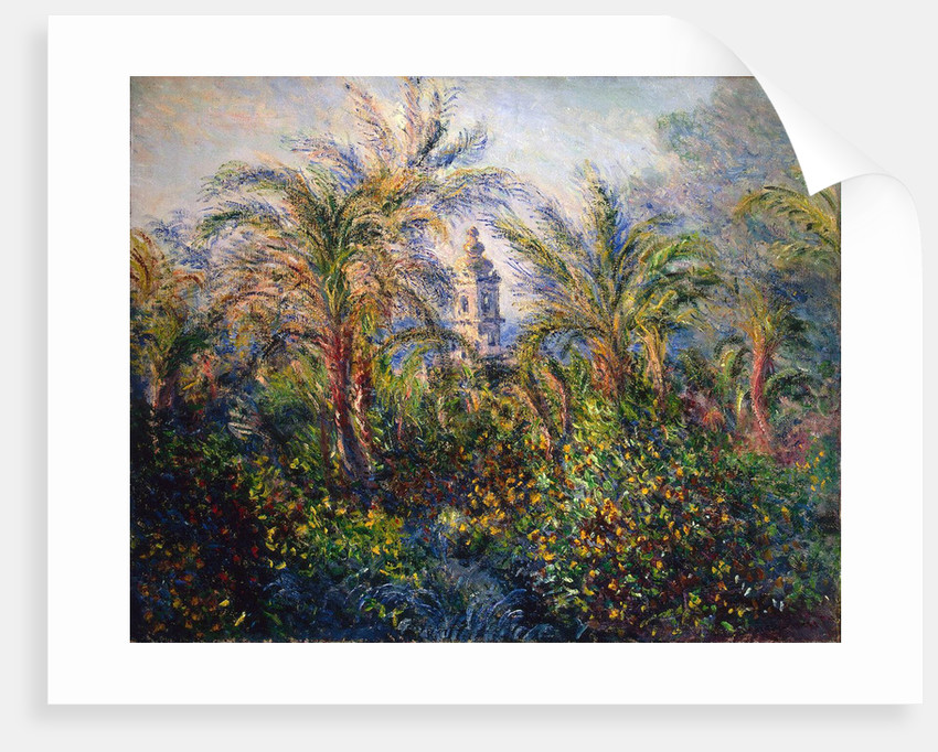 Garden in Bordighera, Impression of Morning, 1884. by Claude Monet