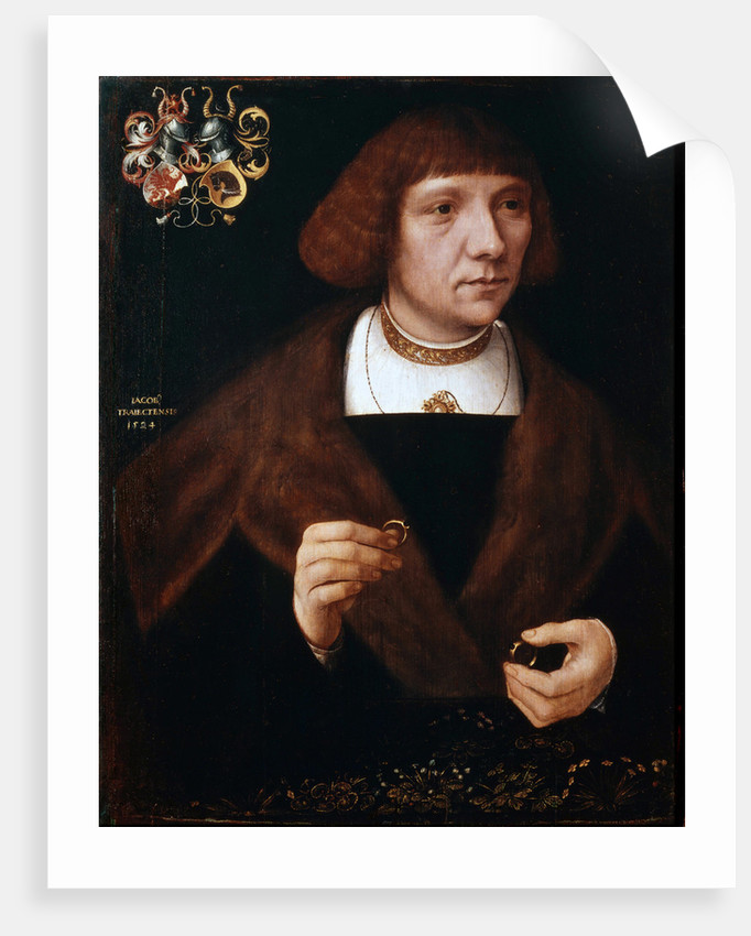 Male portrait with Rings, 1524 by Anonymous