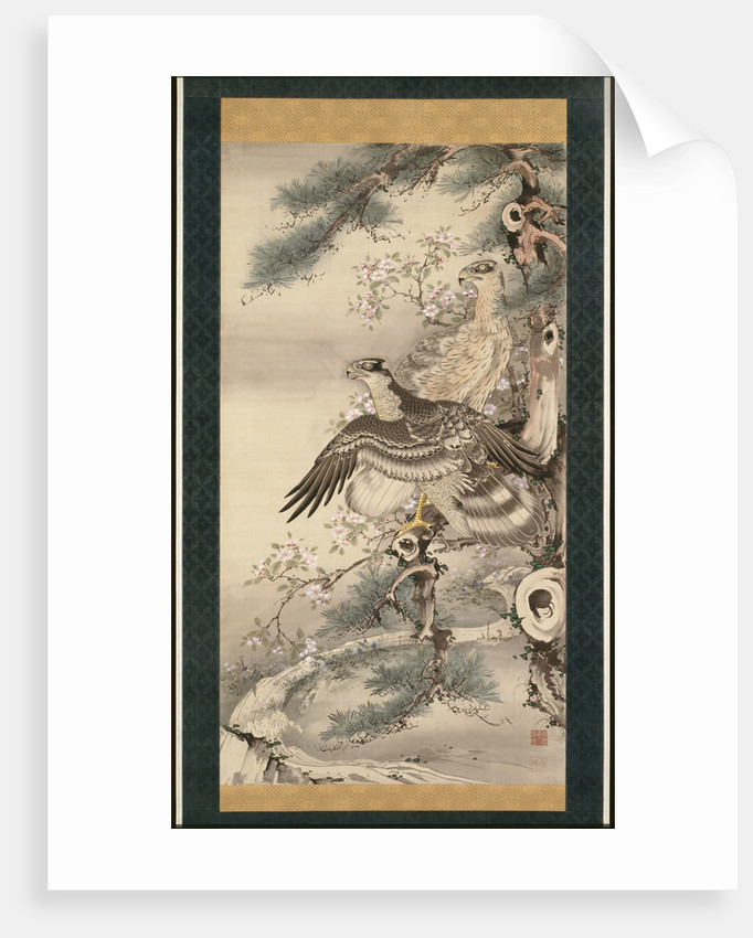 Pair of Hawks with Branch and Blossoms by Soga Shohaku