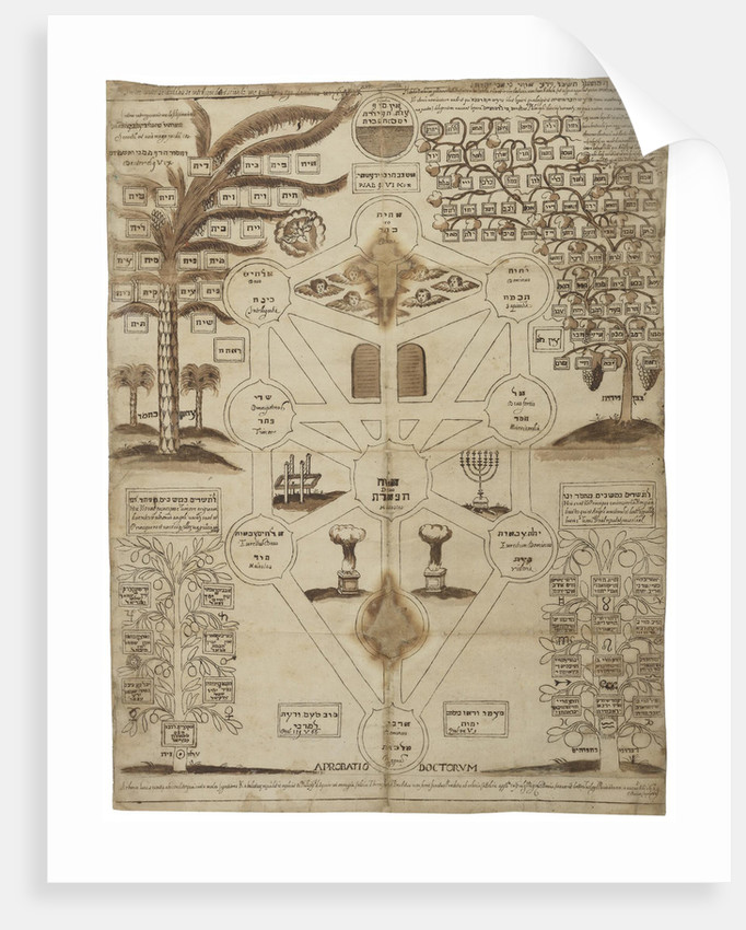 Arbor Cabalistica (Kabbalistic Tree), ca 1625 by Anonymous