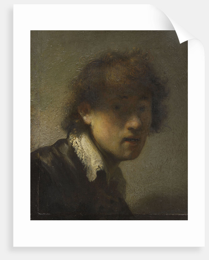 Self-portrait, 1629 by Anonymous