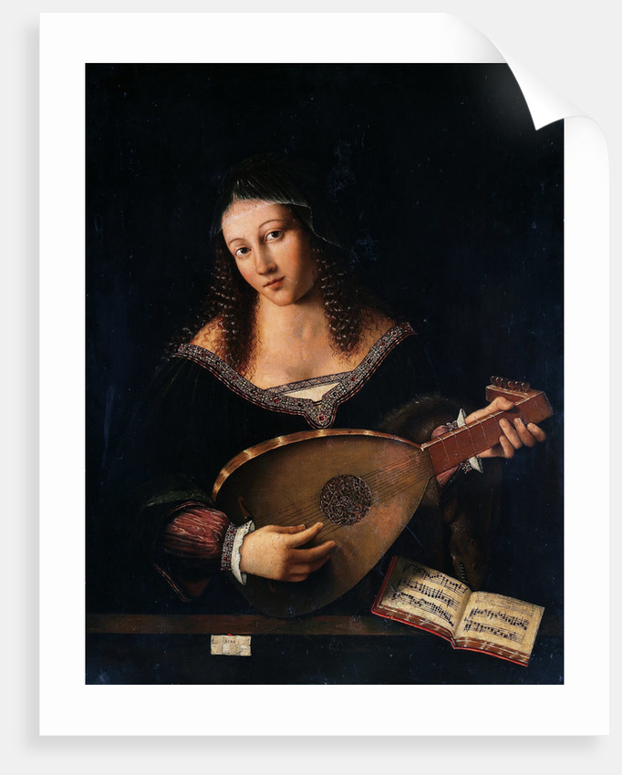 The Lute Player by Anonymous
