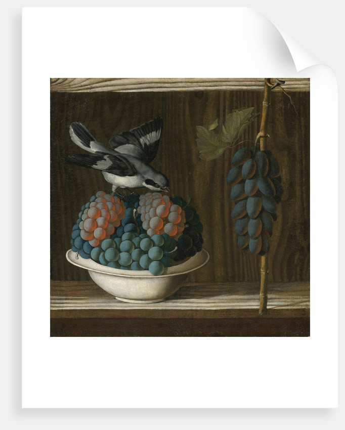 Still Life with Grapes and a gray shrike (Allegory of Painting) by Anonymous