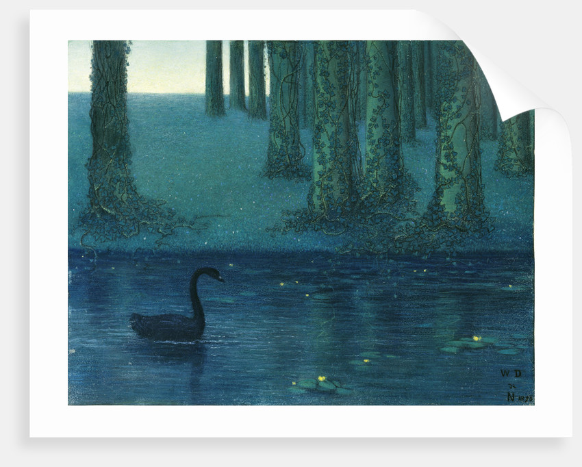 The black swan by Anonymous