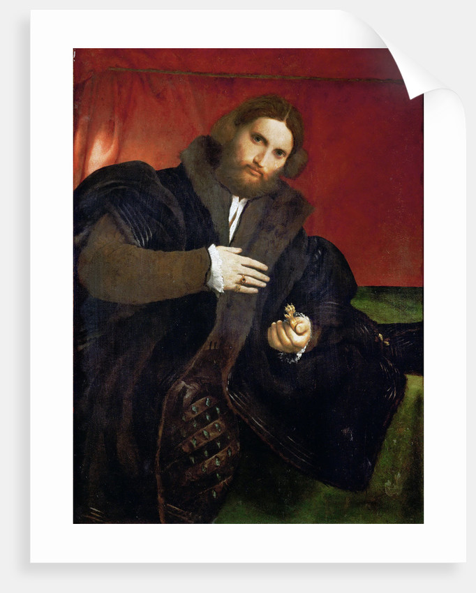Portrait of a Man with a golden animal claw (Leonino Brembate) by Anonymous