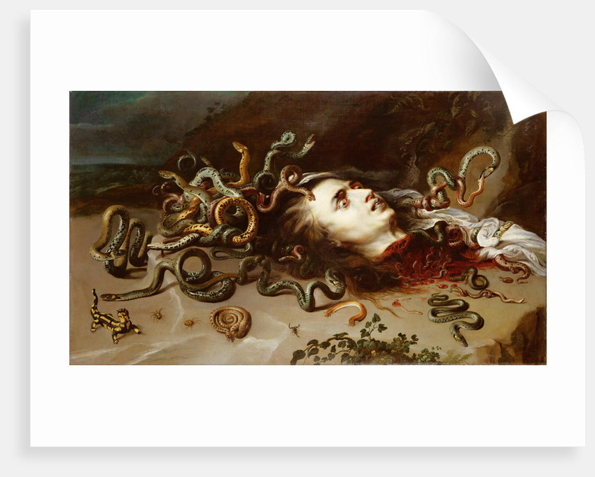 Head of Medusa by Anonymous
