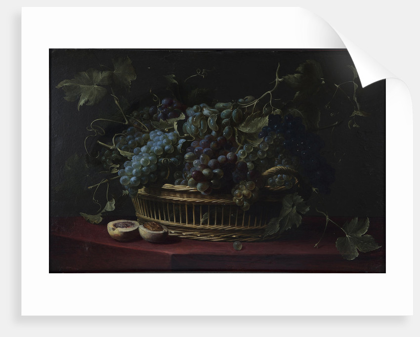 Still life with a basket of grapes by Anonymous