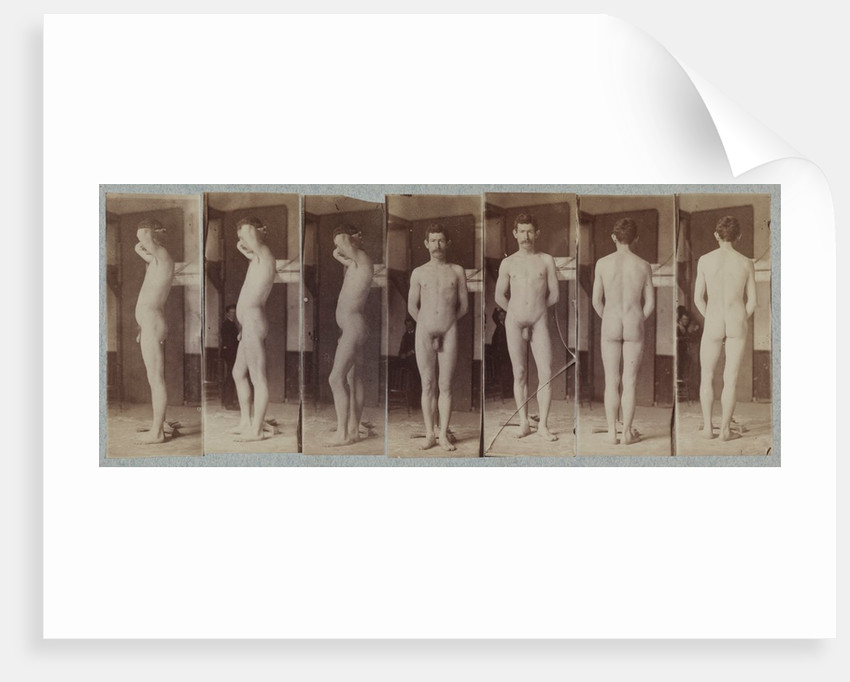 Photographs of a Standing Male Nude Model, c. 1883 by Thomas Eakins (circle of)