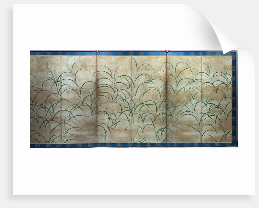 Susuki Grass, c. 1525 by Unknown
