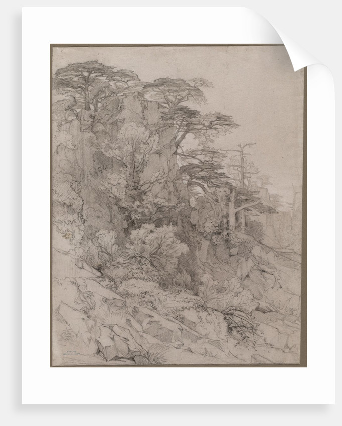 Trees of a Rocky Hillside, late 1800s by Gustave Achille Guillaumet