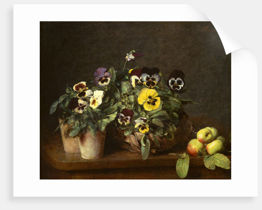 Still Life with Pansies, 1874 by Henri Fantin-Latour