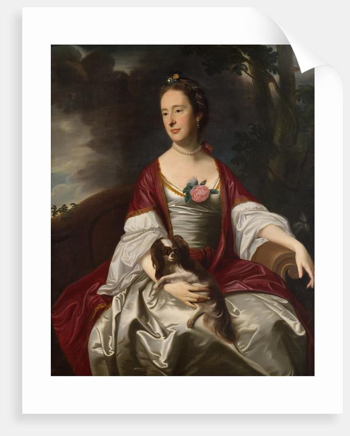 Mrs. Jerathmael Bowers, ca. 1763 by John Singleton Copley
