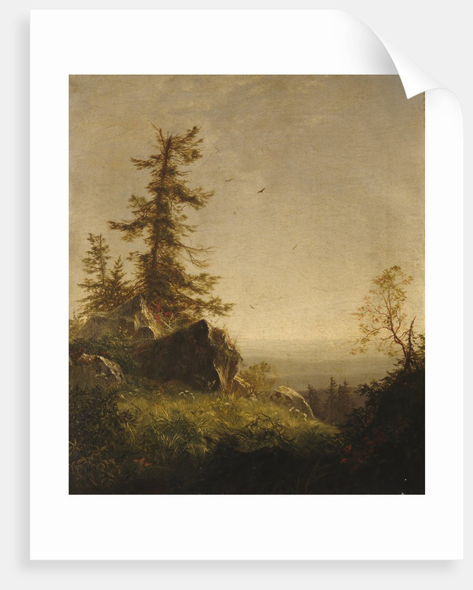 Morning on the Mountain, 1856 by Richard William Hubbard