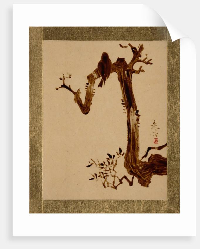 Crow on Tree by Shibata Zeshin