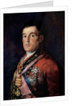 Portrait of Field Marshal Arthur Wellesley, 1st Duke of Wellington by Francisco Goya