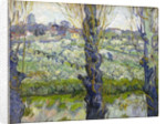 Orchard in Blossom with View of Arles by Vincent Van Gogh
