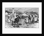 Wedding ploughing ceremony in Styria, 1890 by Anonymous