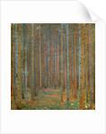 Fir Forest I by Gustav Klimt