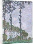 Wind Effect, Series of The Poplars, 1891 by Claude Monet