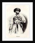 Portrait of Imam Shamil, 19th century by Anonymous