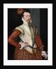 Robert Dudley, 1st Earl of Leicester (1532-1588) by Steven van der Meulen