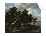 Oaks at a lake with Water Lilies by Jacob Isaacksz van Ruisdael
