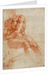 Seated Young Male Nude and Two Arm Studies by Michelangelo Buonarroti
