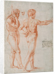 Two Nude Studies by Raphael