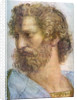 Aristotle. Stanza della Segnatura. The School of Athens (Detail) by Raphael