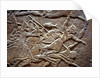 Ashurbanipal at the Battle of Til-Tuba, 650-620 BC by Assyrian Art