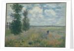 Poppy Fields near Argenteuil, 1875 by Claude Monet