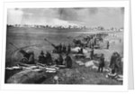 Soviet artillery at the Seelow Heights, April 1945 by Anonymous