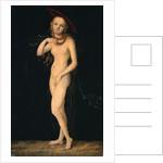 Venus by Lucas Cranach the Elder
