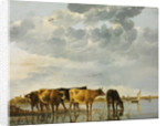 Cows in a River by Aelbert Cuyp