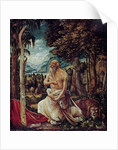 The Repentant Saint Jerome, 1507 by Albrecht Altdorfer
