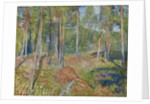 Pine Forest, 1891-1892 by Edvard Munch
