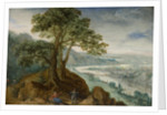 View of Linz, 1599 by Anonymous