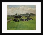 Polder Landscape with Cows, c.1901-1902 by Anonymous