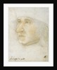 Portrait of Louis Malet de Graville, Admiral of France by Anonymous